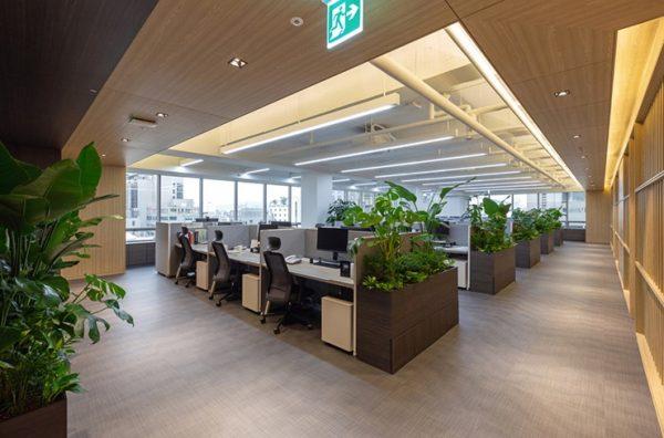 hướng ngồi làm việc, Tư vấn hướng ngồi làm việc đúng phong thủy dành cho dân văn phòng